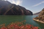 沿长江七省市联合开展绿色航运行动
