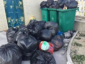 上海垃圾分类缘何让人上了心?
