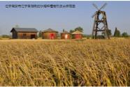 乡村振兴:要让农民强起来