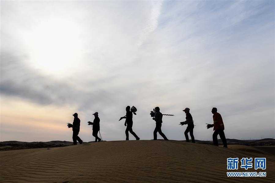 (權威訪談·聚焦中國經濟亮點·圖文互動)(11)防治土地荒漠化 推動綠色發展——專訪國家林業和草原局副局長劉東生