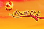 夯实党建载体平台  提升党组织组织力