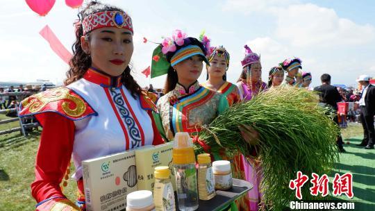 青海湖北岸各族民众喜迎首届丰收节