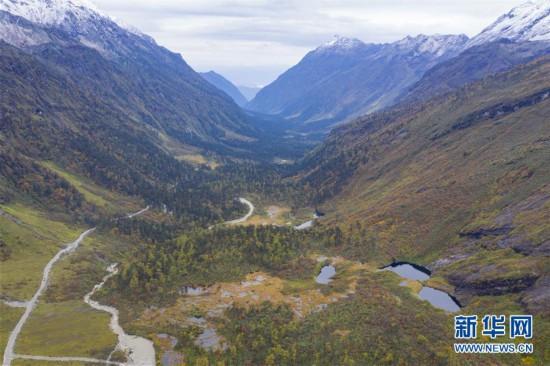 (环境)(3)西藏派墨农村公路秋色如画