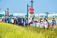 排列5浙江 省杭州市富阳区渔山乡:金秋稻田乐园 助力乡村旅游