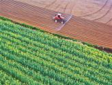 稳农业,底气足——多地有序开展农业生产
