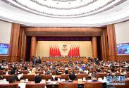 全国政协十三届三次会议举行视频会议