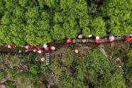 单丛梅竹青橄榄,一枝一叶总关情——广东潮州市扶贫攻坚纪事