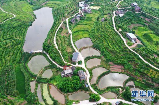 (环境)(5)重庆:夏日山乡美