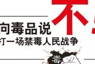 """万丈长缨缚""""毒魔""""——我国坚定不移打赢新时代禁毒人民战争述评"""