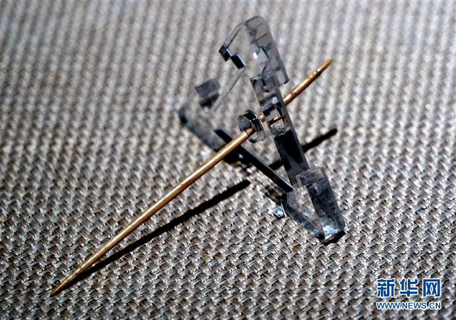 """(文化·黄河文化带·图文互动)(9)回望5300年!——""""河洛古国""""文明溯源"""