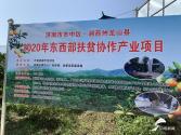 """济南市市中区坚持""""龙山所需 市中所能""""东西部扶贫协作结硕果"""