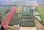 河南温县:支部联建,联出新动力