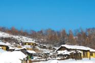 決勝2020:游客來到了木屋村