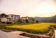 连樟村:以党建引领破解城乡二元结构