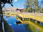 昆明市晉寧區:提升人居環境 鄉村美麗蝶變
