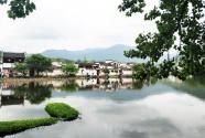 恬静秀丽的湖泊生态系统
